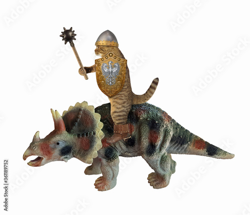 The beige cat knight in a boots and a helmet with a spiked mace and a shield is riding a war triceratops Canvas Print