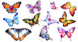 Fototapeta Buterfly - beautiful watercolor butterflies, isolated on a white