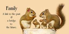 Inspirational Quote On The Family By An Unknown Author With A Family Of Squirrels Sharing Seeds On A Birch Log.