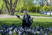 A Woman Feeds Pigeons On An Alley In The Park, Small Joys Of Spring, Spring Comes, Relaxation And Rest Of Spring, Care And Love For Birds, Tourism Alone, Trip Through The City