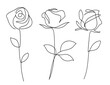 One line drawing. Garden rose with leaves. Hand drawn sketch. Vector illustration.