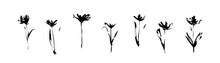 Grunge Black Flowers Set Drawn...
