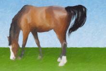 Impressionnisme. Portrait D'un Cheval En Train De Paître Dans Un Champ