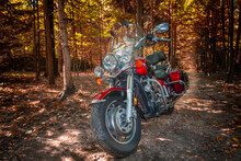 Park Moscow Region, September 29, 2019 - Motorcycle Cruiser In Sunny Autumn Forest. Selective Focus. Kawasaki VN1600 Vulcan Nomad