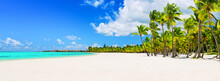 Coconut Palm Trees On White Sa...