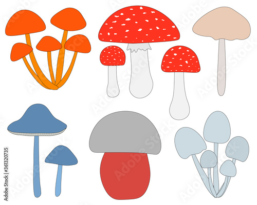 Photo Set of poisonous inedible mushrooms toadstool fly agaric vector illustration in