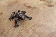 Cute Black Frog Statue On A Wo...