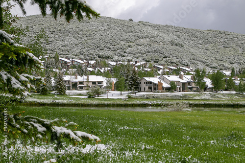 Snowfall during summer. Trees and grass covered with white snow. #361355533