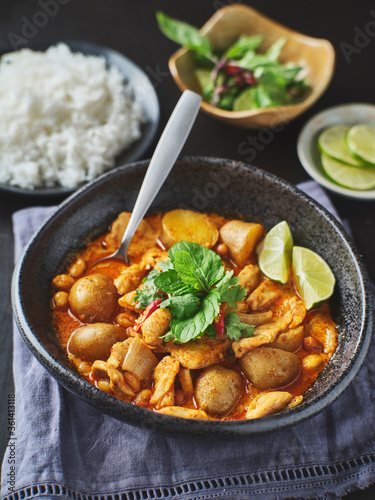 Leinwand Poster thai massaman curry with chicken and potatoes in bowl