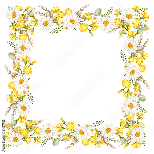 Fotografia Vector frame with daisies and yellow wild flowers and ears of wheat