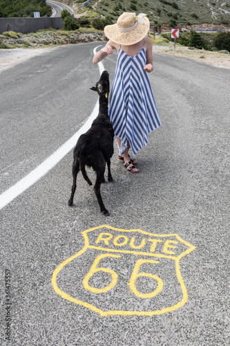Young attractive female traveler wearing striped summer dress and straw hat standing on an endless straight empty road in the middle of nowhere on Route 66 road and feeding black sheep.