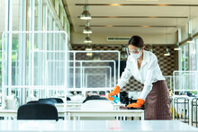 Woman Restaurant Staff Cleanin...