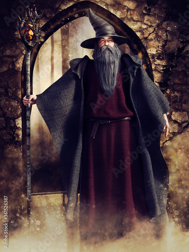 Fantasy scene with an old wizard standing in front of a stone garden gate Canvas Print