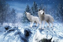3D Rendered Fantasy Winter Landscape With Two White Wolves - 3D Illustration