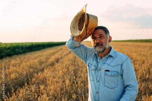 Fototapeta farmer standing in wheat field obraz