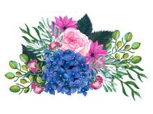 Watercolor Illustration Rose P...