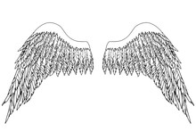 Black And White Hand-drawn Wings