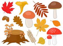 Set Of Mushrooms Brown White C...