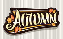 Vector Banner For Autumn Season, Black Logo With Curly Calligraphic Font, Autumn Leaves And Decorative Stripes, Greeting Card With Unique Brush Lettering Autumn On Grey Abstract Background.