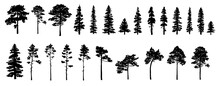 Set Of Tree Silhouettes Of Dif...