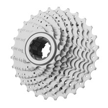 Bicycle Cassette Isolated