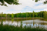 Beautiful lake during the spring season, Flers, Normandy, France. Green foliage in the background that reflects in the water. Sunny day in the park. Composition shot.