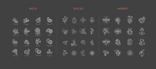 Vector Icon And Logo Collection Hot Drinks, Spices, Nuts And Honey . Editable Outline Stroke Size. Line Flat Contour, Thin And Linear Design. Simple Icons. Sign, Symbol