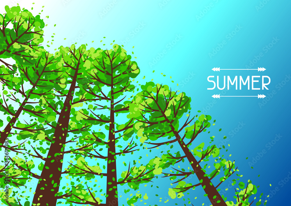 Fototapeta Summer forest background with stylized trees.