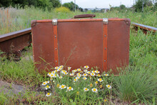 Vintage Suitcase On The Old Rusty Railroad Tracks Overgrown With Grass And Flowers