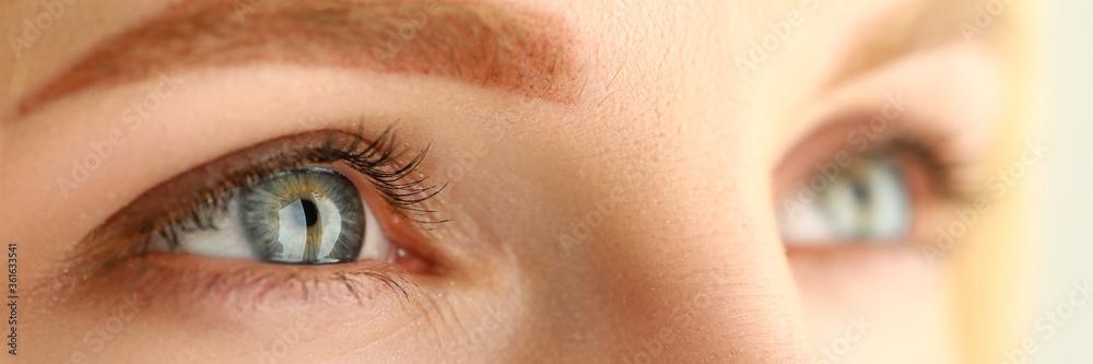 Fototapeta Beautiful female green and gray colored eyes
