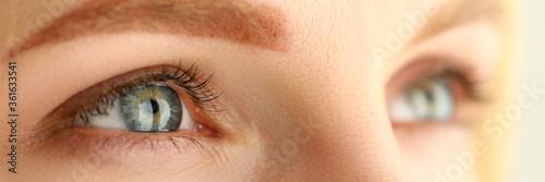 Obraz Beautiful female green and gray colored eyes - fototapety do salonu