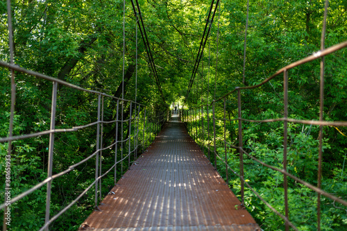 Iron canopy bridge passes through dense vegetation in the forest. High quality photo