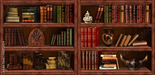 Bookcase, bookshelf Canvas Print