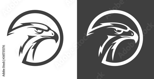 Photographie Abstract eagle or hawk head isolated on white background