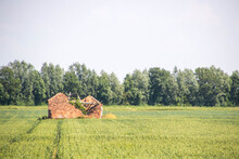 British Countryside Ruin
