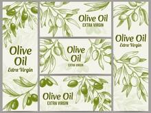 Olive Oil Banner. Organic Oils...