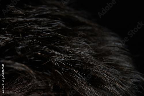 Fototapeta Short straight dark hair