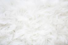 Light, White, Furry Coat Backg...