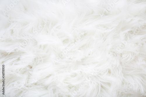 Fotografia, Obraz Light, white, furry coat background