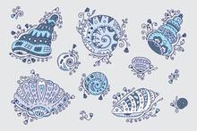 Vector Set Of Doodle Ornamental Seashells