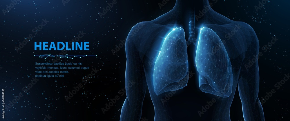 Fototapeta Lung and human body. Abstract vector 3d lungs on body background. Human health, respiratory system, pneumonia illness, biology science, smoker asthma, healthcare concept.