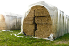 Square Straw Bale Protected With Plastic Folie