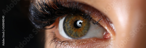 Fotografie, Obraz Beautiful female green colored right eye with eyelashes extensions