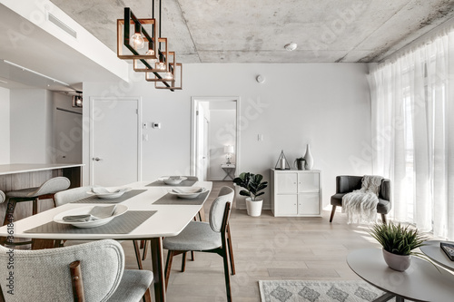 Canvastavla Brand new luxury Canadian style furnished and staged apartment in condominium wi