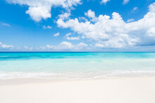 Tropical Beach In The South Se...
