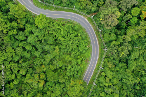 Fototapety, obrazy: Scenic road through forest with traffic driving.