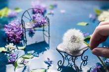 Floral Composition. Lilac, Dan...