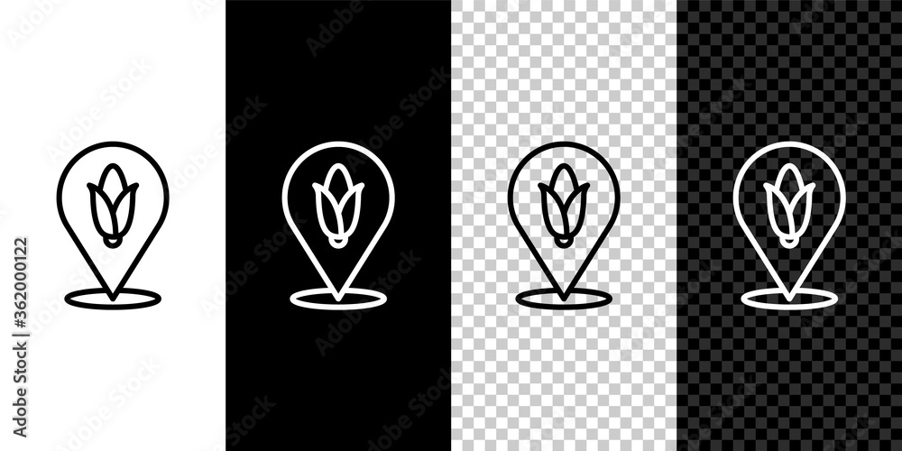Fototapeta Set line Location corn icon isolated on black and white background. Vector.