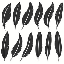 Bird Feather Icon, Writing Sym...