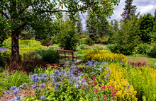 Park Bench Under Tree With Flowers At Manito Park In Spokane Washington